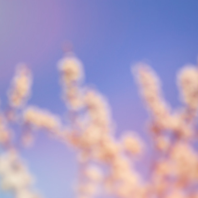 """""""abstract fuzzy backgrounds"""" stock image"""