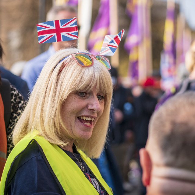 """""""Brexit protest"""" stock image"""