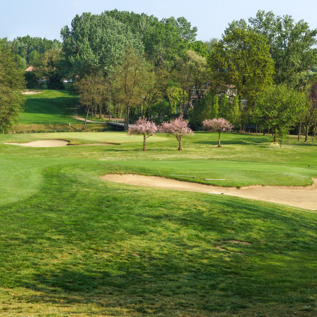 """""""Sand bunkers on the golf course hill"""" stock image"""