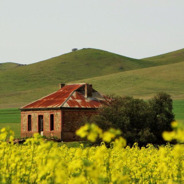 """Burra Hut"" stock image"