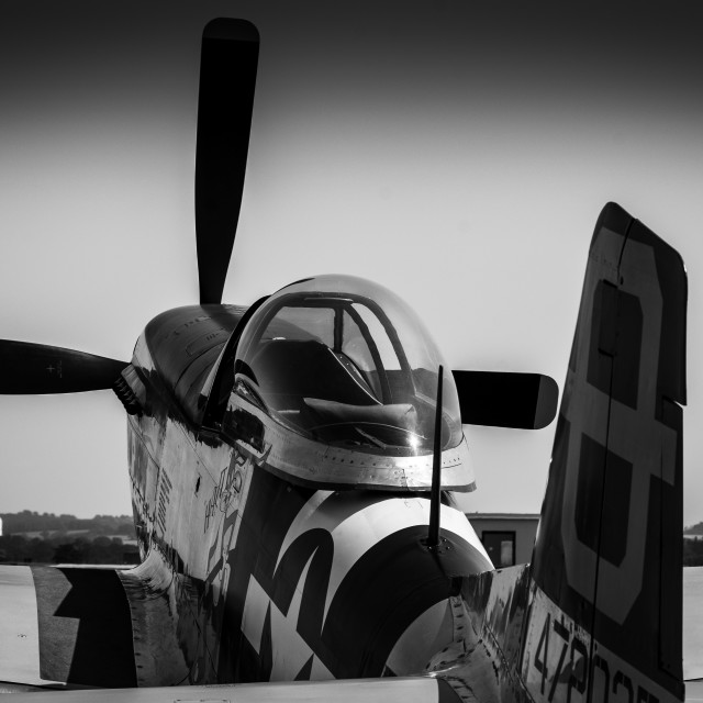 """North American P-51D Mustang in black and white"" stock image"