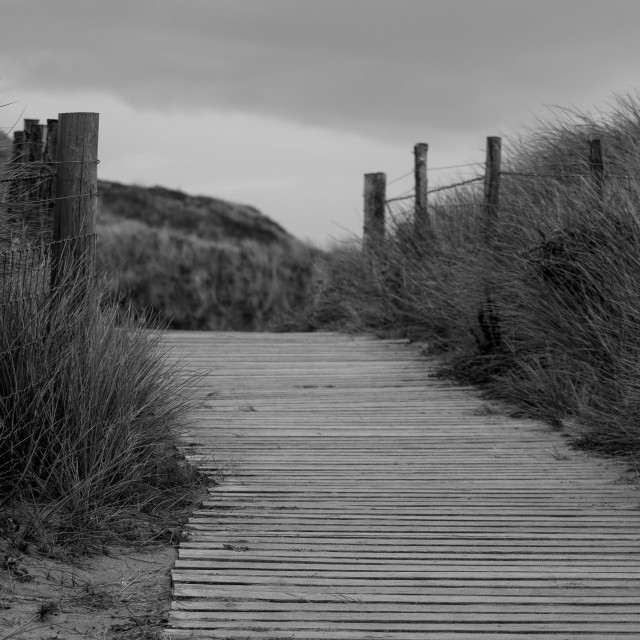 """Cornwall Coastal Path (Black & White)"" stock image"