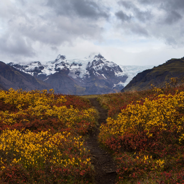 """""""Trail towards Vatnajokull Glacier"""" stock image"""