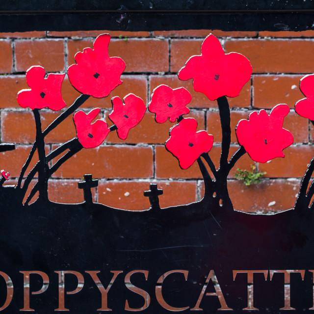 """Poppyscatter bench in Morecambe"" stock image"