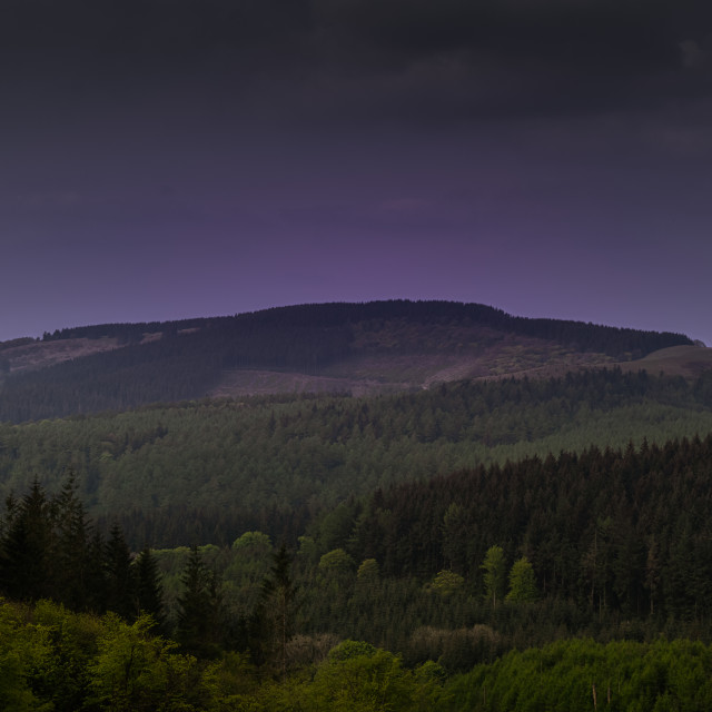 """Macclesfield Forest"" stock image"