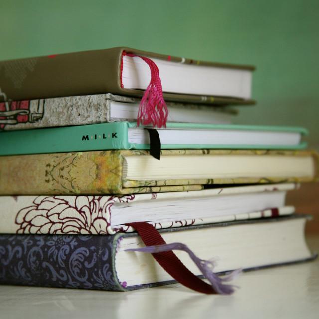 """Journals"" stock image"