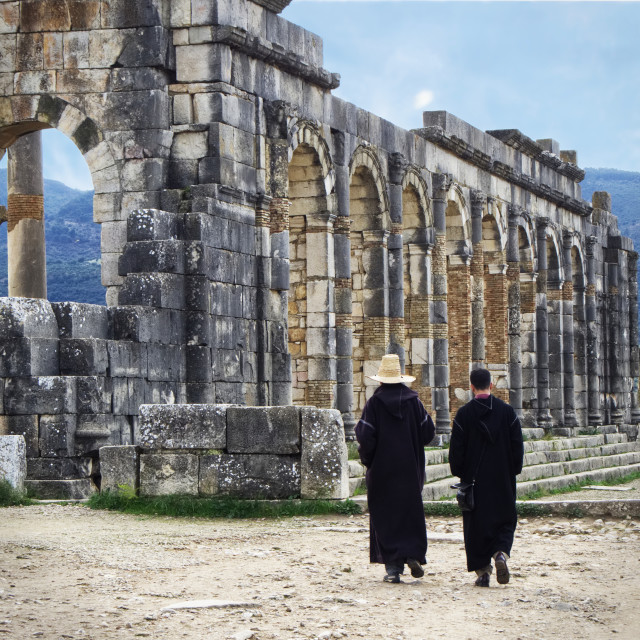 """""""Volubilis is a partly excavated Berber and Roman city in Morocco"""" stock image"""