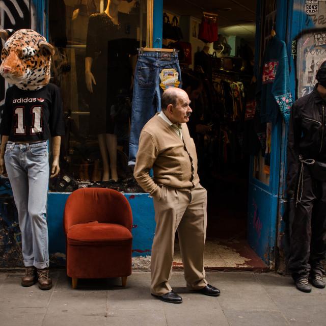 """""""Among Tigers"""" stock image"""