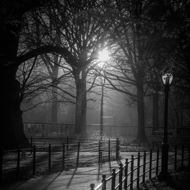"""Central Park Sunset Black and White"" stock image"