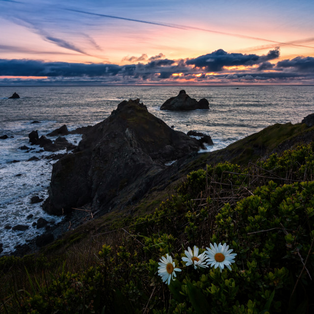 """A Seascape Sunset in Humboldt County, California"" stock image"