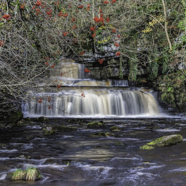 """""""Cotter Force"""" stock image"""
