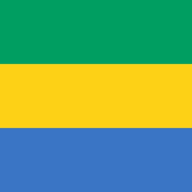 """Flag of Gabon"" stock image"