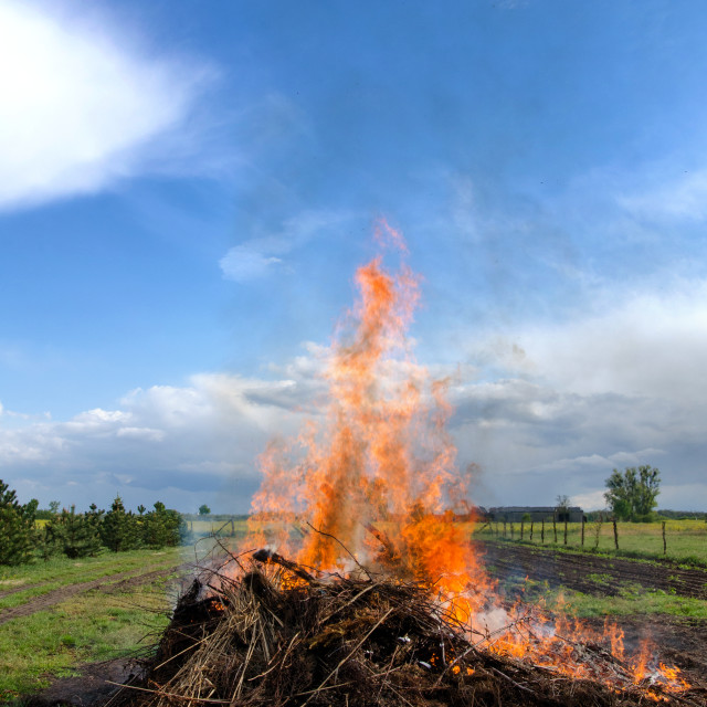 """""""Flames rising into the sky"""" stock image"""
