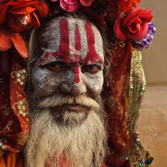 """Sadhu ( India)"" stock image"