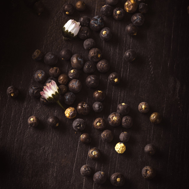 """Dry juniper berries spilled on wooden board with daisy blooms"" stock image"