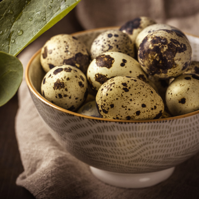 """Ceramic bowl full of small spotted quail eggs on wooden board"" stock image"