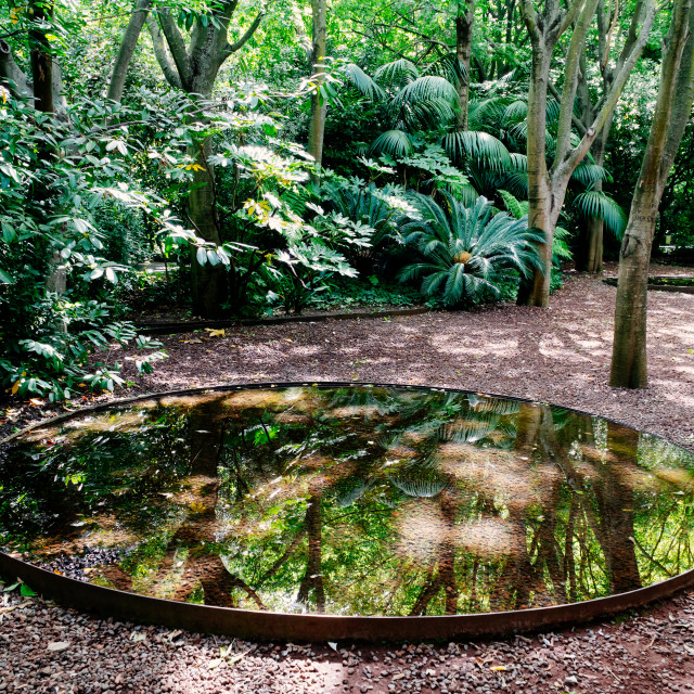 """Small Pond Water Reflections In Lisbon Garden"" stock image"