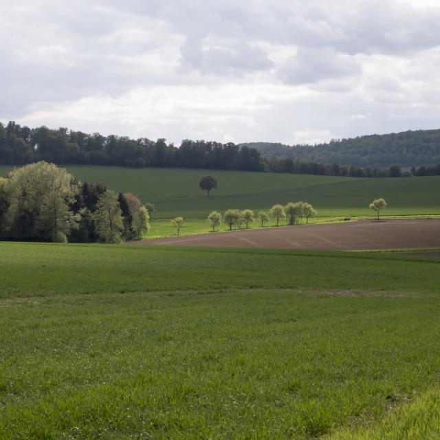 """spring time hilly landscape"" stock image"