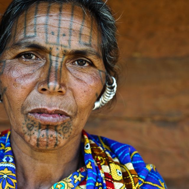 """Woman from the Kutia Kondh tribe ( India)"" stock image"