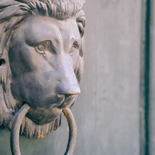 """Lion Head Knocker"" stock image"