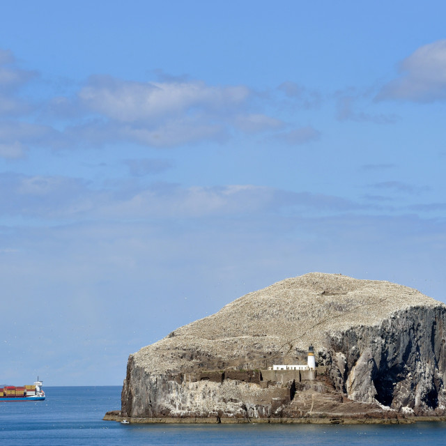 """A ship passes Bass Rock, Scotland"" stock image"