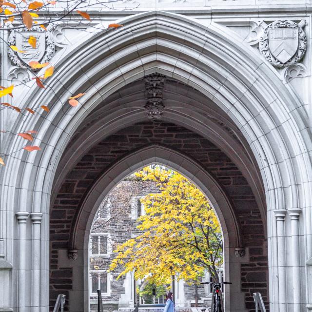 """Princeton University"" stock image"