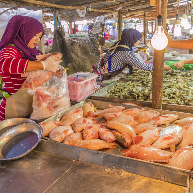 """""""Fresh seafood for sale at the local market in Ao Nang, Krabi Province,..."""" stock image"""