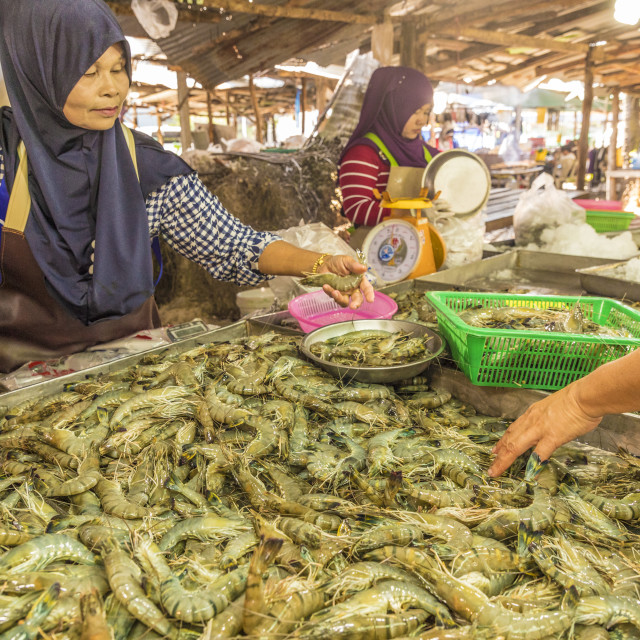 """""""A fresh seafood stall at the local market in Ao Nang, Krabi Province,..."""" stock image"""