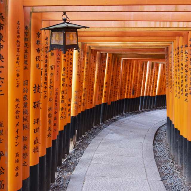 """Red Gates at the Fushimi Inari Taisha, a Shinto shrine on Mt. Inari, Kyoto,..."" stock image"