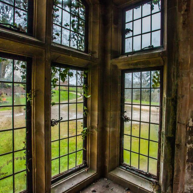 """Abandoned Manor window"" stock image"