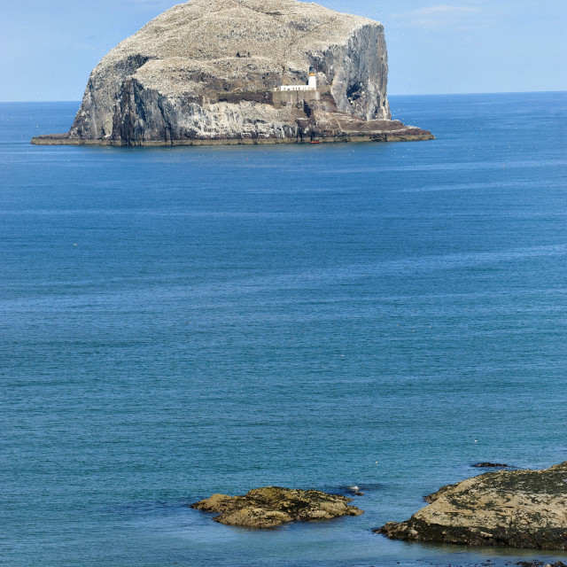 """Bass Rock, Scotland"" stock image"