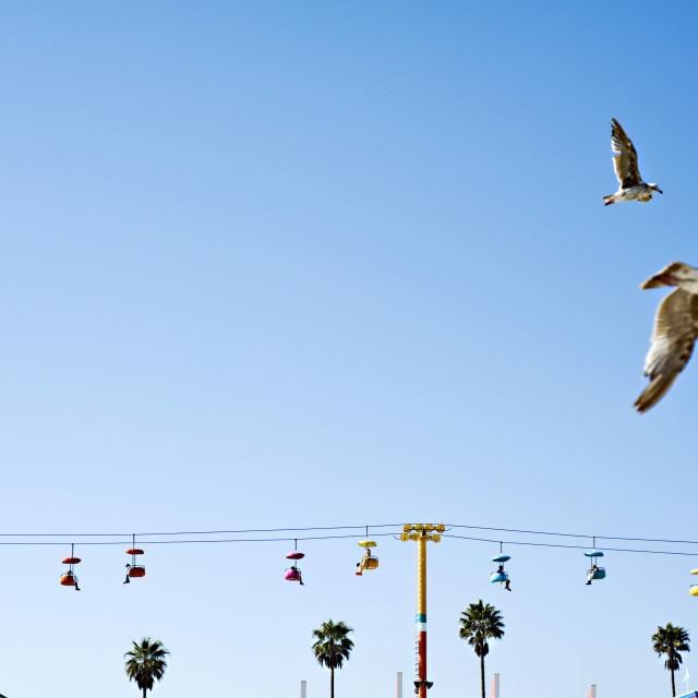 """Sky Glider and birds, Santa Cruz, California. USA."" stock image"