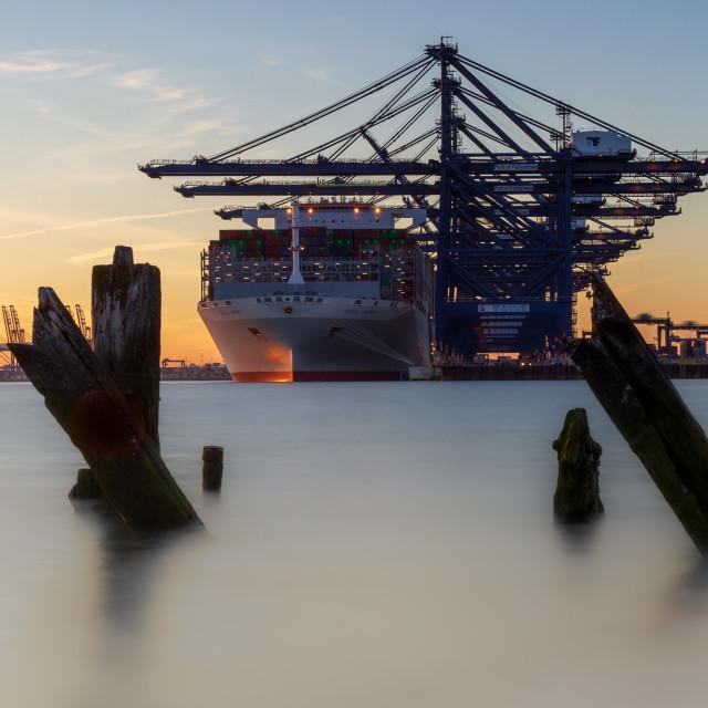 """""""Port of Felixstowe Golden Hour"""" stock image"""
