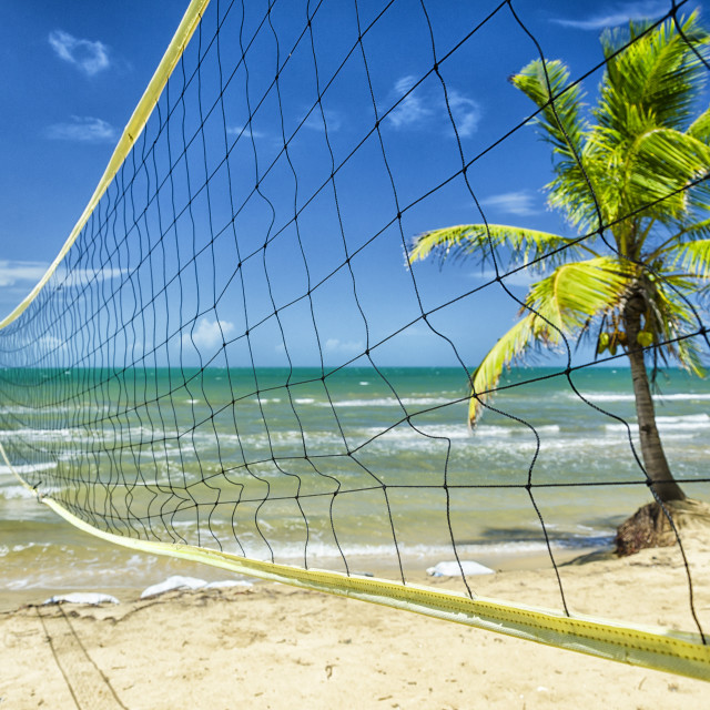 """""""Ready for some tropical volleyball"""" stock image"""
