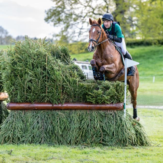 """Floors Castle Horse Trials 2019"" stock image"
