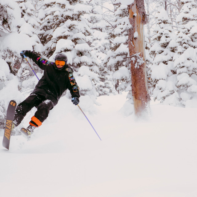 """Powder day"" stock image"