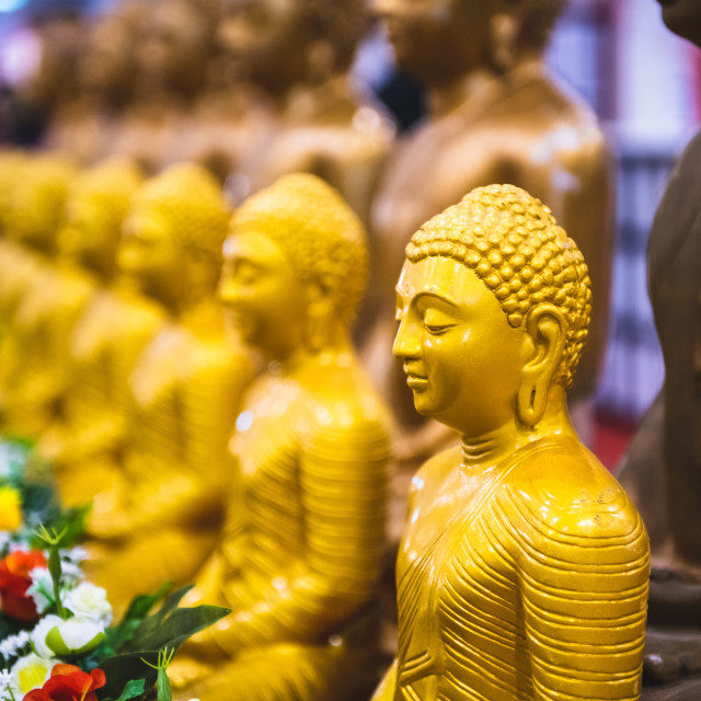 """Golden statue of Buddha in a row"" stock image"