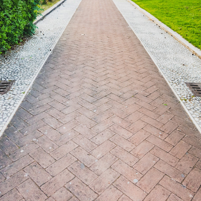 """The day forward concept outdoors park path"" stock image"