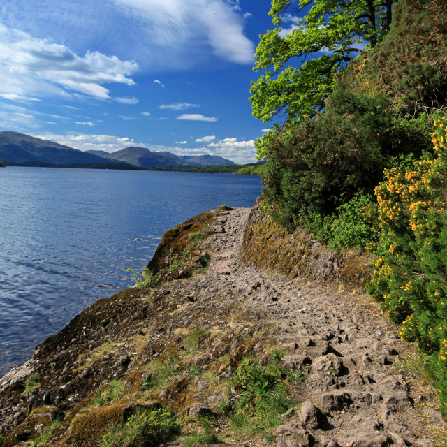 """Footpath around Loch Lomond"" stock image"