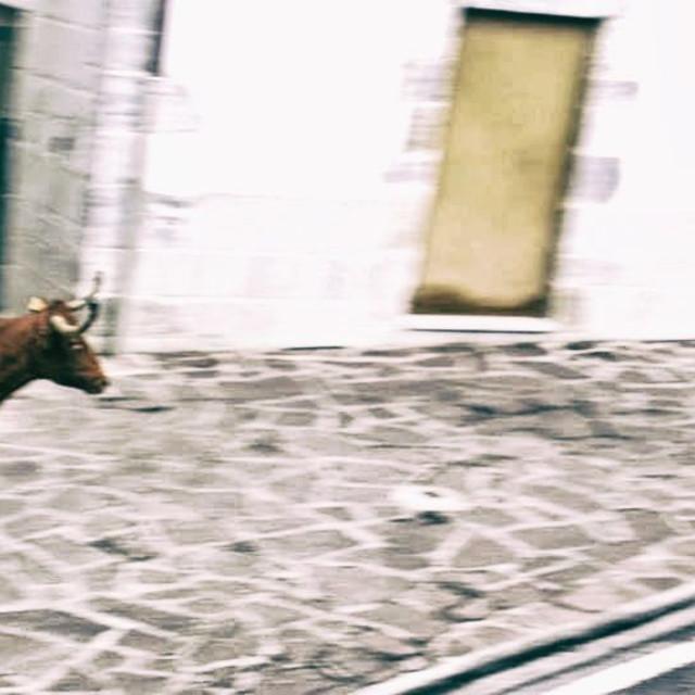 """Spanish Village Bull Run"" stock image"