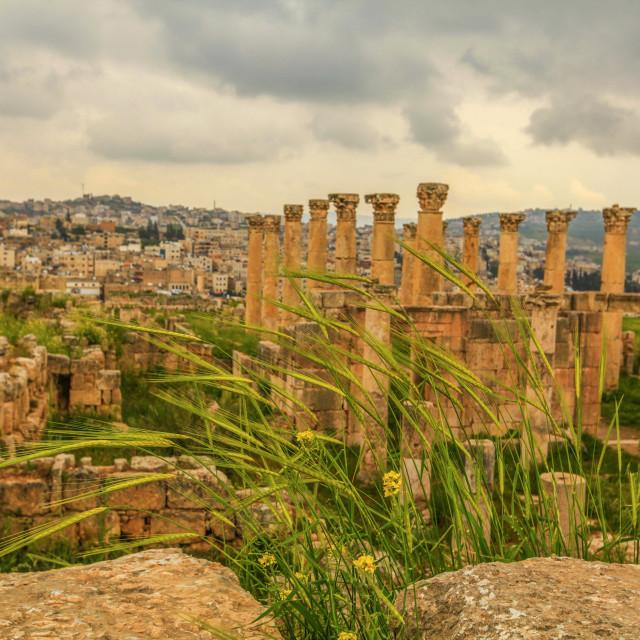 """Jerash"" stock image"