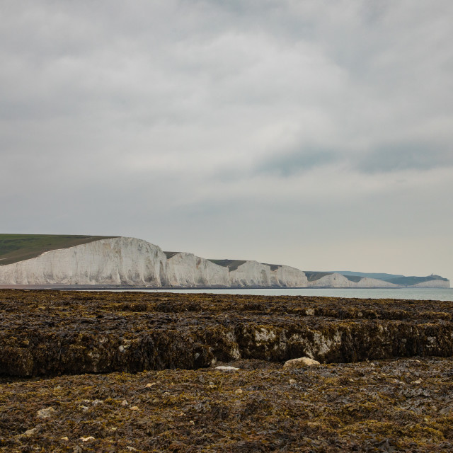 """White Chalks Cliffs At Seven Sisters Country Park, England"" stock image"