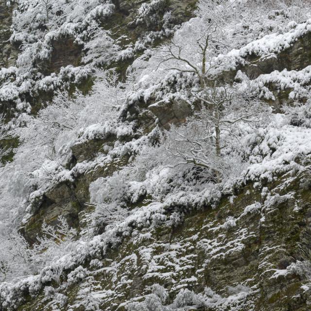 """Snowy precipice in the Geopark O Courel"" stock image"