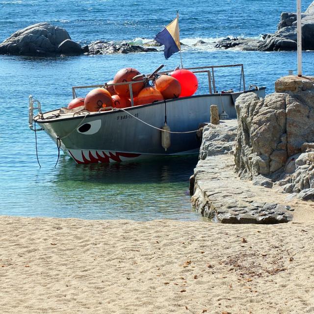 """Shark Boat Of Calella De Palafrugell"" stock image"