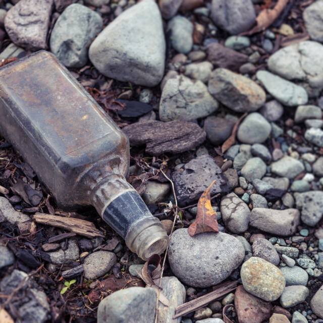 """""""Discarded Whiskey Bottle"""" stock image"""