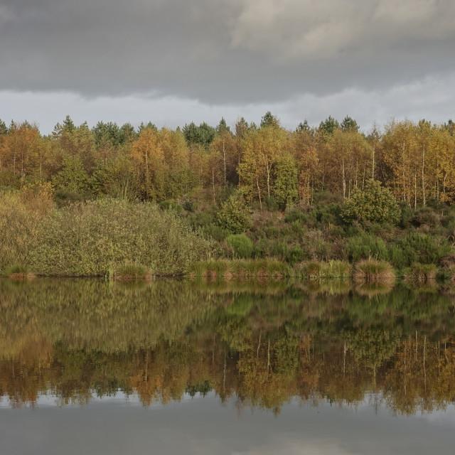 """Mirrored landscape"" stock image"