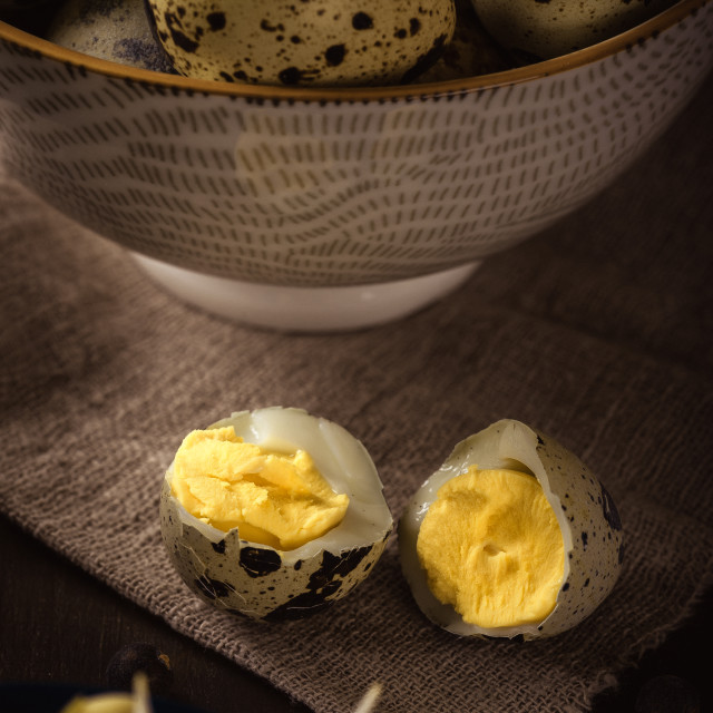 """Quail eggs with mung bean sprouts in a bowl on dark wooden board"" stock image"
