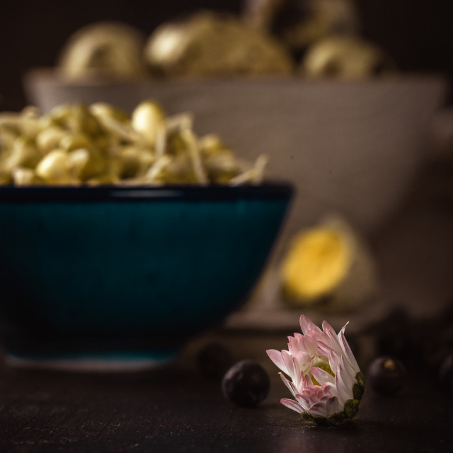 """Small bloom of daisy flower in front of bowl with mung bean sprouts and quail..."" stock image"