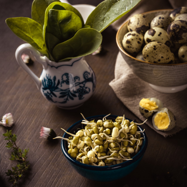 """Mung bean sprouts in a bowl on dark wooden board with spinach and eggs"" stock image"