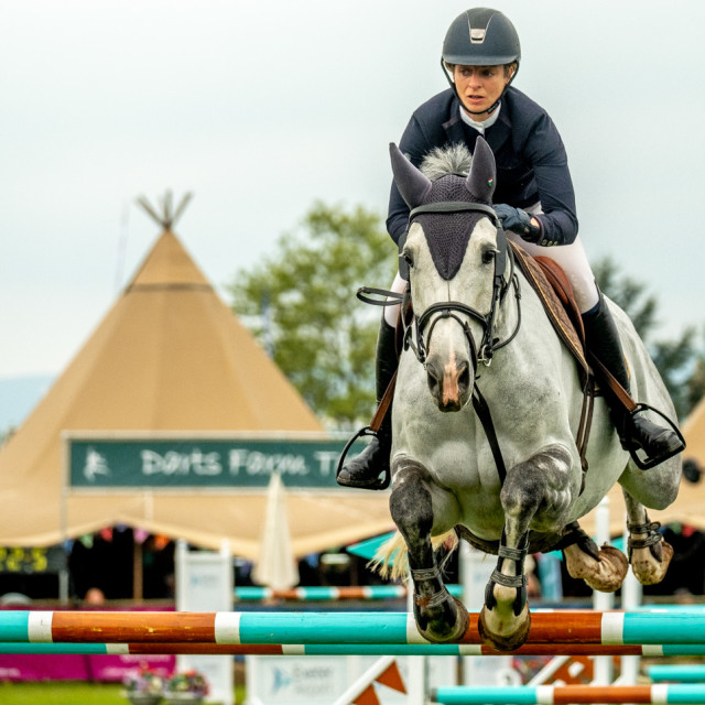 """Show jumping.1"" stock image"
